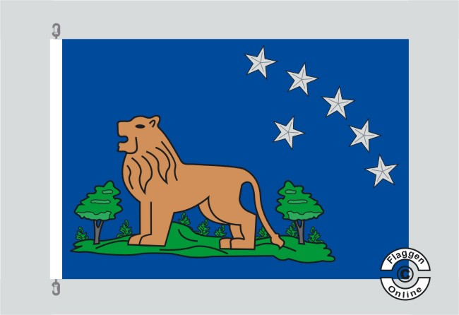 24th Missoury Volonteers Infantry Lions Legion Flagge