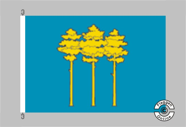 Dimitrowgrad Flagge
