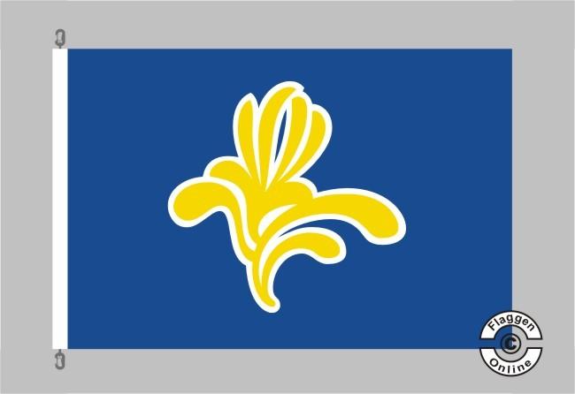 Brüssel Flagge Fahne