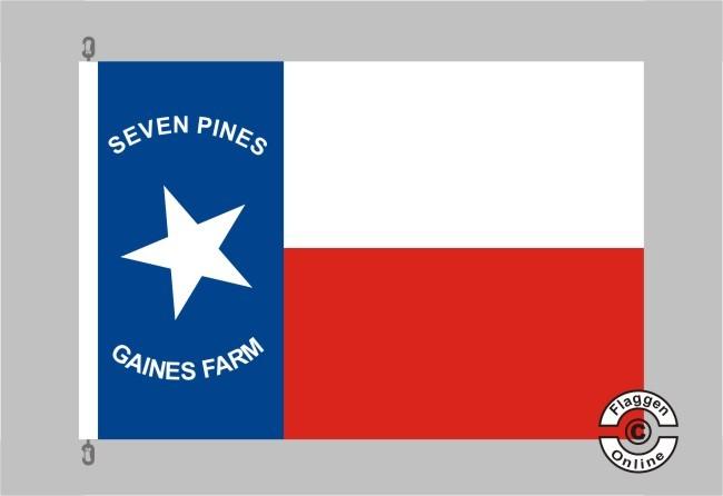 1st Texas Infantry Regiment Flagge